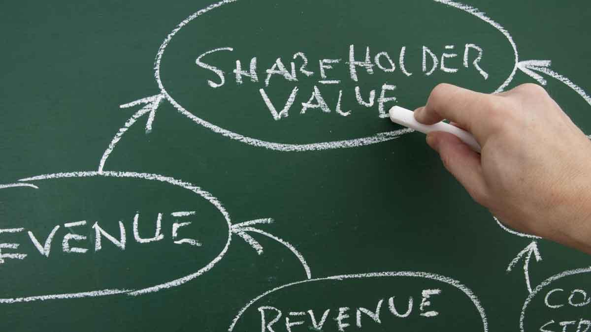 81 Shareholder Value