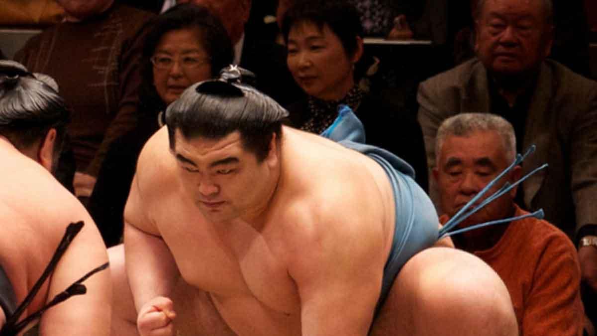 173 Sumo Wrestler