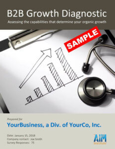 B2B Growth Diagnostic Report SAMPLE pdf 791x1024