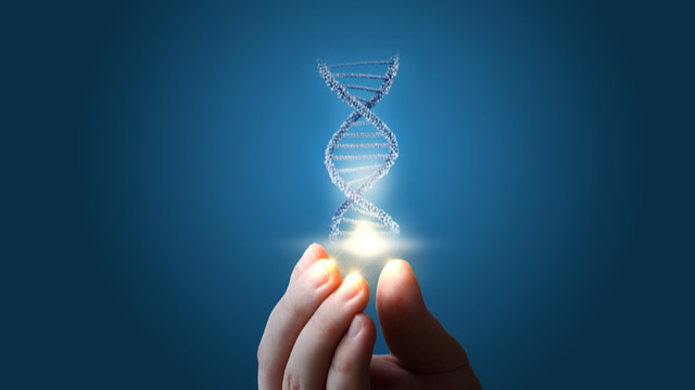The value proposition for a product, the DNA of successful innovation