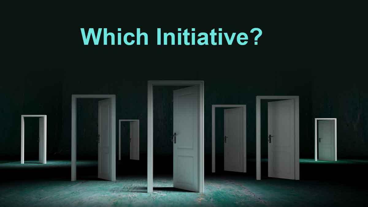 314-Which-initiative