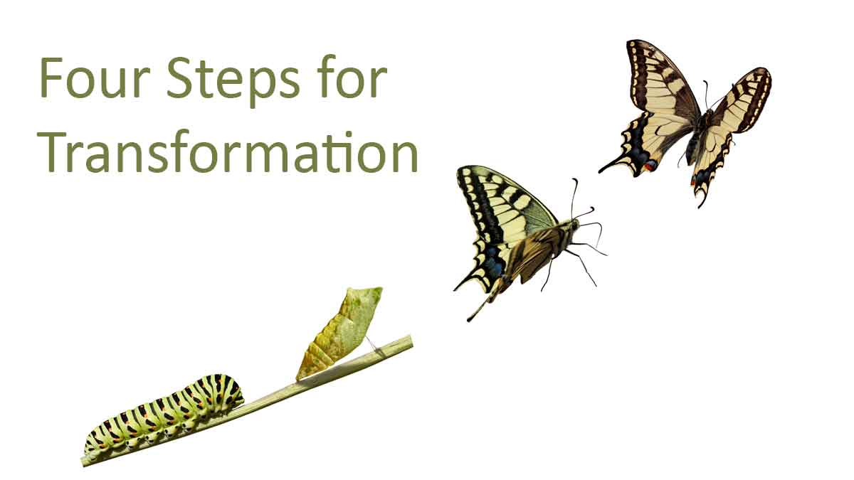 330-4-Steps-for-transformation